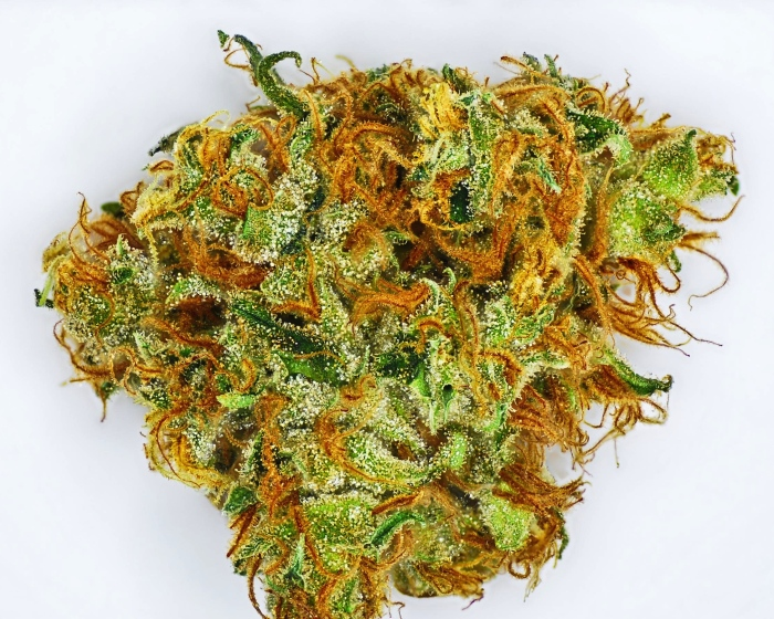 lemon-haze-cannabis-strain